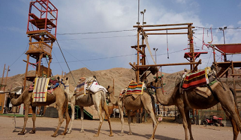 camel's ranch rope park.png